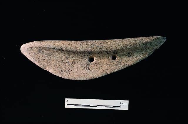 捲瓣型石刀為新石器時代晚期宜蘭丸山考古遺出土文物。
