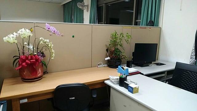 辦公桌擺放綠色植物,辦公時增添一些好心情。(攝影/楊子樊)