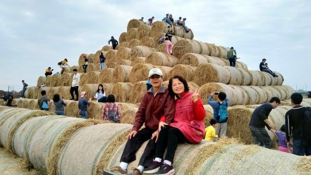 堆積如山的巨型稻草捲,吸引全台北、中、南3萬多人前往拍照打卡!(記者廖素貞/攝影)