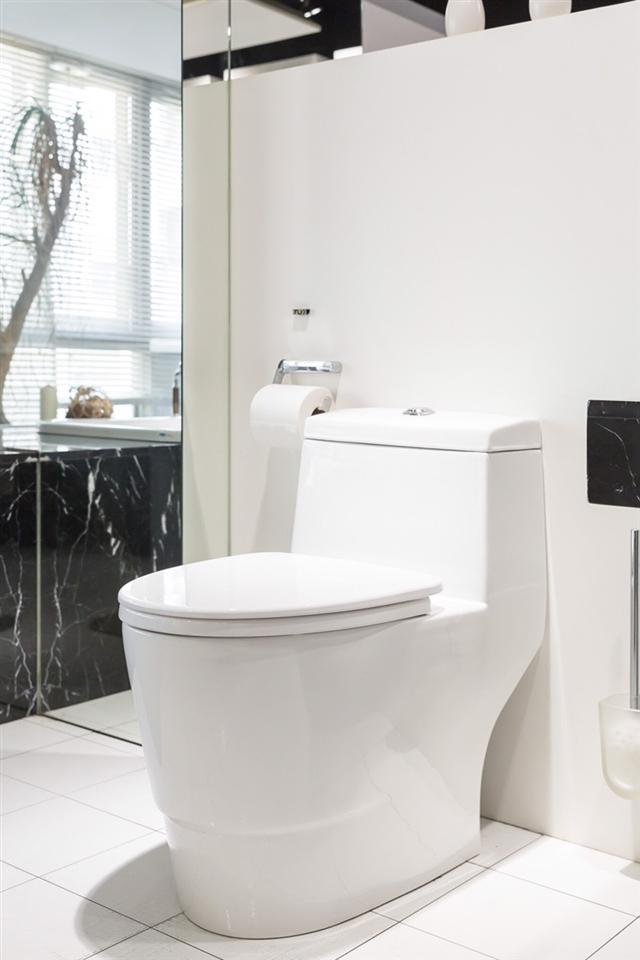 晶鑽陶瓷 長期使用瓷面仍光亮如新,是目前最高檔的衛浴瓷。(瑭麗莊提供)