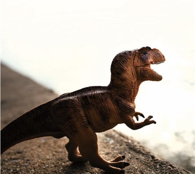 如果你想真正了解恐龍最後一天的情形,就在這裡了。(123RF)