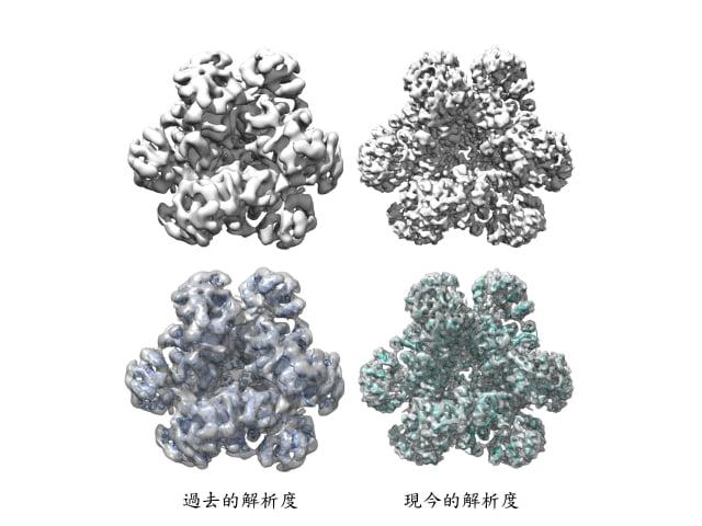 冷凍電顯技術省去蛋白質結晶化過程,並用電子顯微鏡提高解析度到原子的等級,有助於把蛋白質結構看得更清楚。