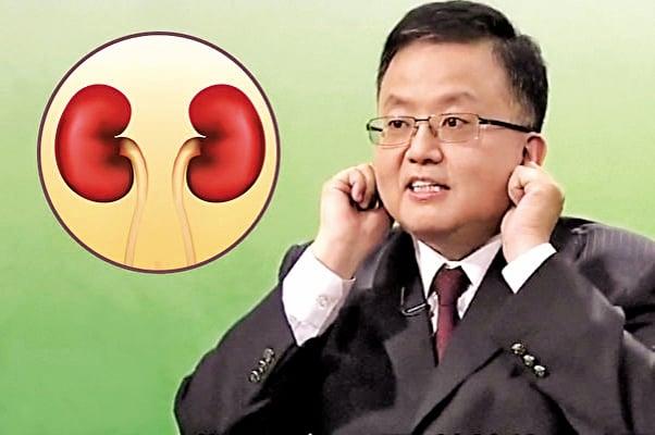 中醫認為「腎開竅於耳」,而耳朵就像腎臟的形狀;「腎為先天之本」,而耳朵也像一個嬰兒在母體裡彎曲的樣子。(大紀元製圖)