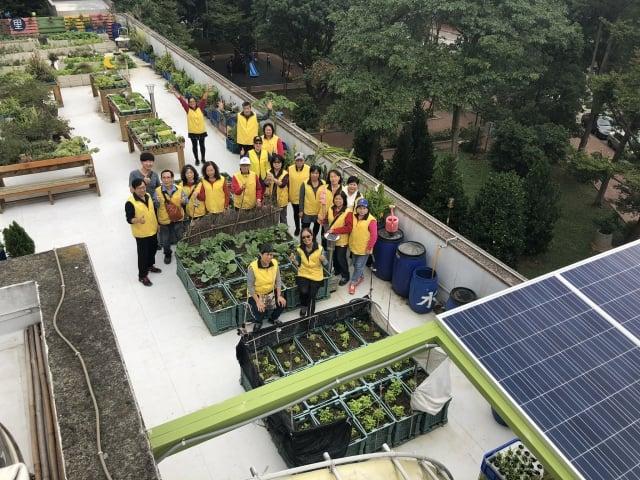 中壢區的中山里,善用集會所屋頂的閒置空間,結合社區農園、魚菜共生,及太陽能光電系統,打造漂亮的綠屋頂。