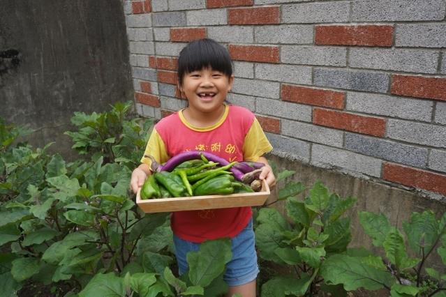 每個孩子都迫不及待地採收。(圳堵國小提供)