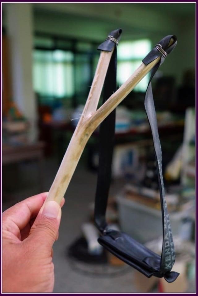 樹皮纖維堅韌可製作繩索或織網。枝幹木材質輕富彈性,可作家具或薪柴,更可以削成陀螺、製成寶劍與彈弓,是不可多得的童玩植物。(攝影/鄭清海)