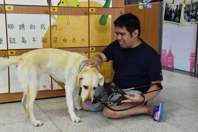 導盲犬Lucy與林家其相依為命。(明道大學提供)