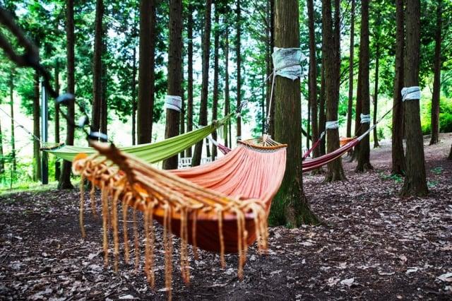 在韓國豪華露營,親自大自然。(業者提供)