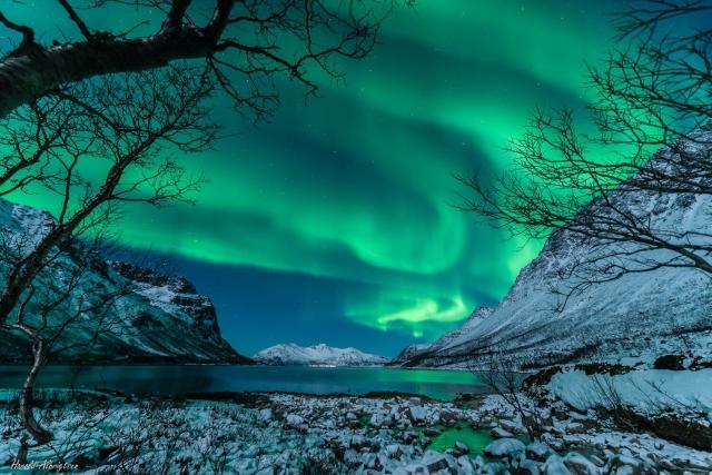 磁極的移動自然讓人認為,極光出現的區域也會跟著變化。(NASA)