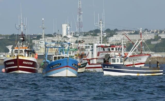 農委會表示,未來將成立台歐盟打擊IUU漁業工作小組,確保漁獲物為合法捕撈。(AFP)