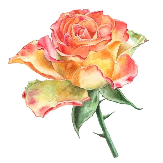 人與人之間的善意,有如種子一般,在心田上播撒,竟會綻放出如此美麗恍如生命的花,誰說這世上沒有點石成金的奇蹟?(123RF)