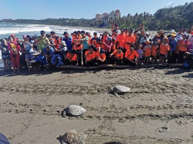 台東縣政府與海巡署東部分署在富山漁業保護區,一起將海龜野放回海洋。(台東縣政府提供)