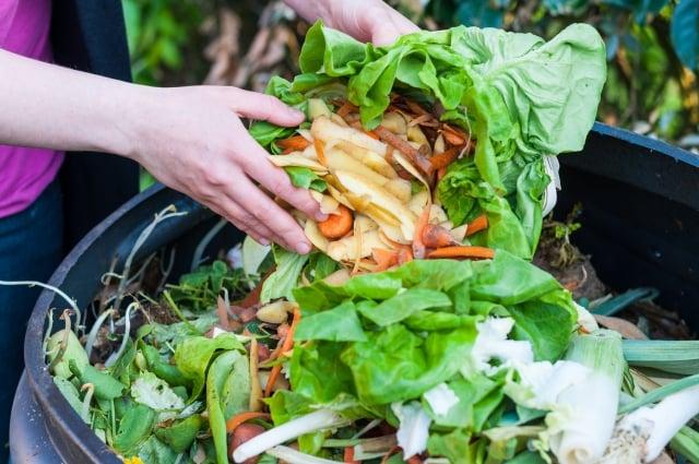 美國約有40%的食物從未食用過即被丟棄。(Fotolia)