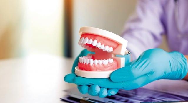 當人們沒有牙齒而無法咀嚼時,控制咀嚼的神經或主宰感覺等部分的腦神經會萎縮。(shutterstock)