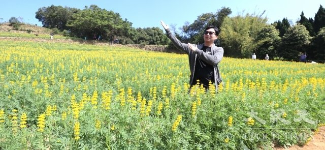 許多遊客前來賞花遊玩,還開心拍照。