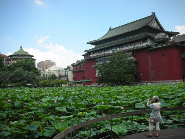 臺北植物園是認識自然植物的教室。(Foxy Who \維基百科)