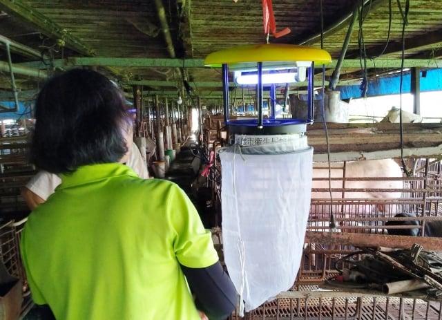 高雄市衛生局已針對日本腦炎確診個案居住地,以及活動地周圍進行豬舍內懸掛捕蚊燈等防治措施。(高市衛生局提供)