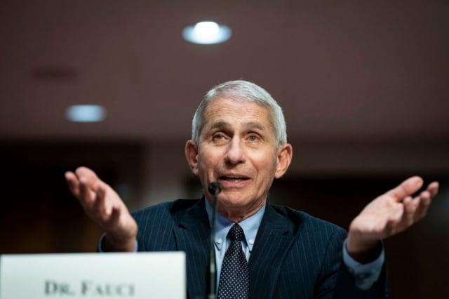 美國傳染病專家佛奇6月30日,出席參議院委員會有關安全回到工作與學校的聽證會。(Getty Images)