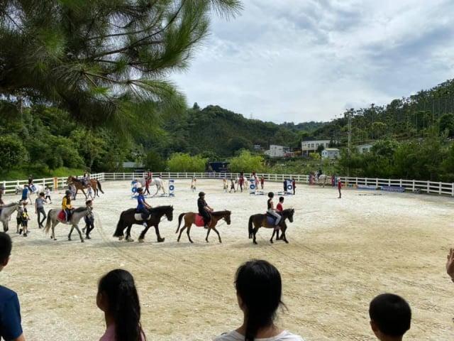 臺中中坑國小畢業生於畢業典禮上展馬術學習成果,由學弟妹擔任領馬者,讓學長姐騎馬登場。