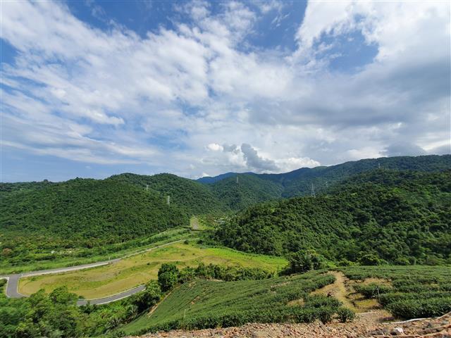 宜蘭縣冬山鄉中山村是「冬山紅茶」主要產地。(冬山鄉公所提供)