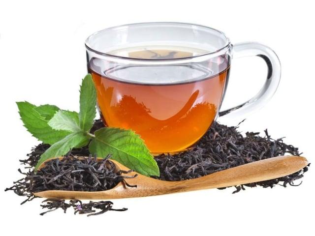 茶葉和所有植物一樣,本身都含有維生素、礦物質、蛋白質等營養素。(Shutterstock)