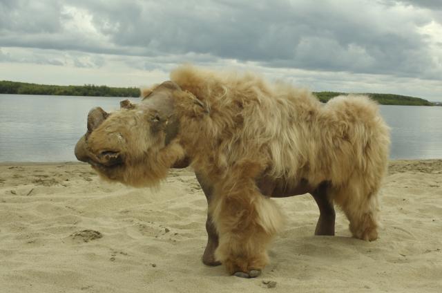 披毛犀幼崽「薩沙」的復原圖。(Albert PROTOPOPOV / AFP)