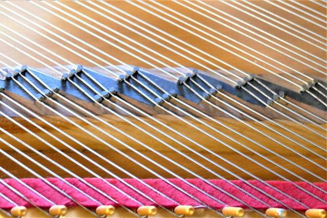 陳清流於今年2月25日獲得「鋼琴琴橋結構」的專利權,更擁有20年的專利權限。(記者鄧玫玲/攝影)