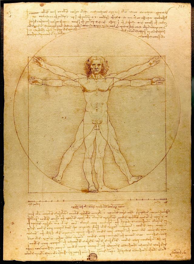達文西著名作品《維特魯威人》。(維基百科)