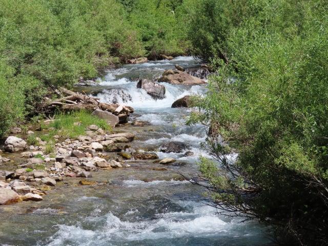 美國懷俄明州雅富頓附近的間歇泉每隔15分鐘會冒出泉水一次,這是泉水匯集而成的小河。(Shutterstock)