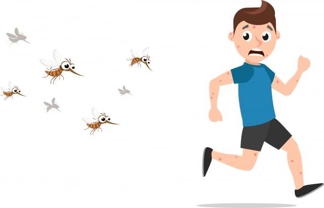 最好穿著寬鬆、淡色、長袖衣服、長褲,比較不會招來蚊子,深色容易吸引蚊子。(Shutterstock)
