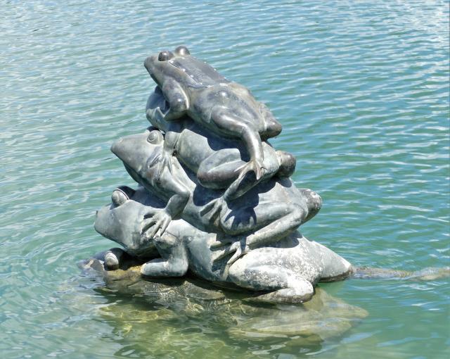 九隻大小水蛙彷彿隨時要彈跳出水面。(攝影/鄧玫玲)