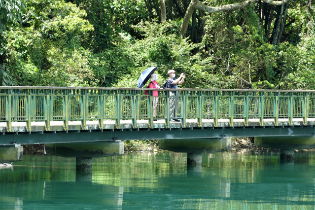 新水蛙頭步道可連接臨湖步道,環繞著日月潭湖水一路前行。(攝影/鄧玫玲)
