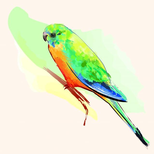 靈魂化身錦鳥回家的故事,當時造成轟動。這隻不請自來的小鳥和家人相處了一個星期,然後飛走,再也不回來了。(示意圖)。(123RF)