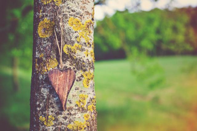 在疫情下的愛之語,唯有愛,是引領前行的導航。(123RF)