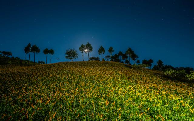入夜後,旅人可以仰望中秋月圓與靜謐星空。(Airbnb提供)