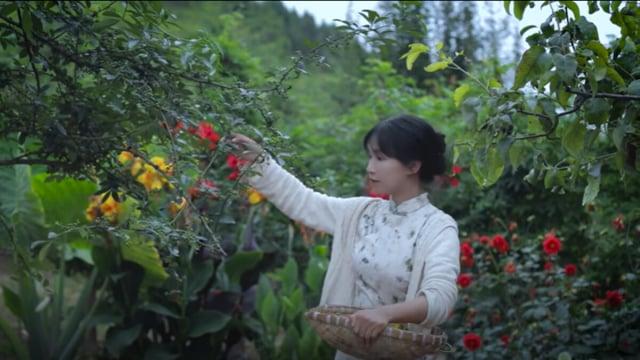 中國大陸知名網紅李子柒,頻道停止更新超過2個月,引發民眾關心。(網路影片擷圖)