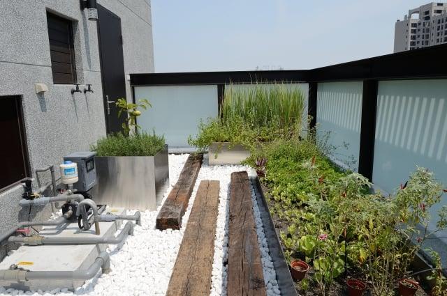 頂樓小菜園特意鋪上白石子與枕木,並以不鏽鋼打造種植範圍,方便管理。(記者蘇玉芬/攝影)