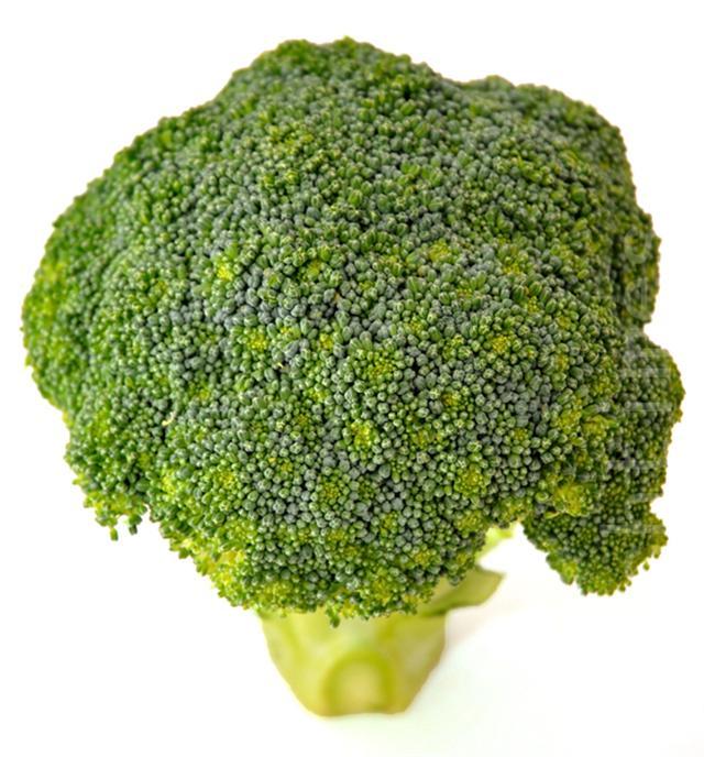 花椰菜(攝影/明國)