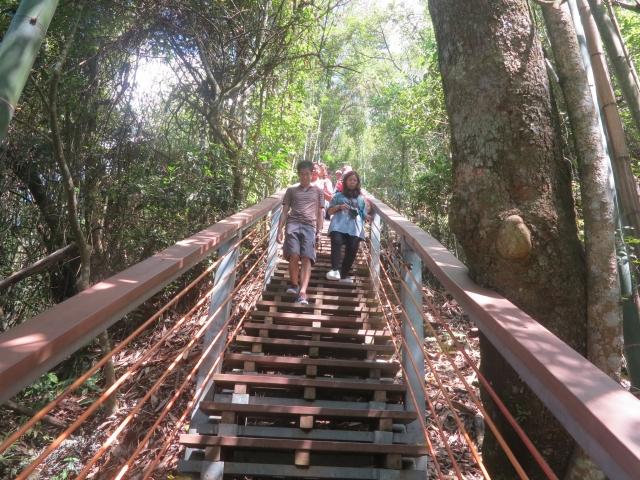 通往天梯的旅程,必需在層層階梯帶領下才能到達。(攝影/鄧玫玲)