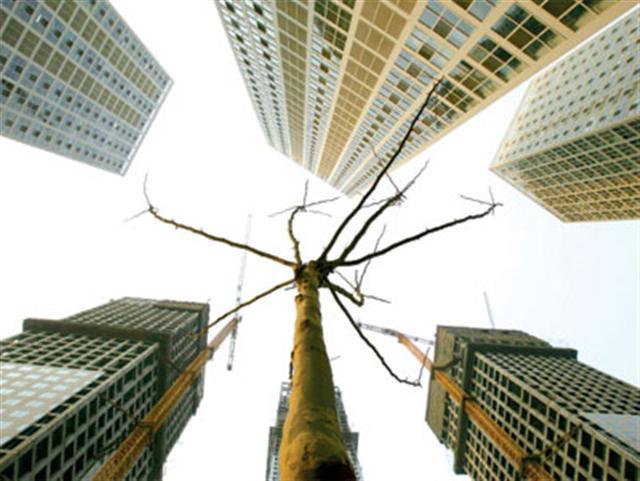 近日,北京當局多部委聯手降溫一線樓市;北上廣深叫停「首付貸」;上海樓市或現史上最嚴調控。(Getty Images)