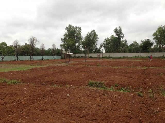 中壢區公所田園綠活計畫規劃99個種植區塊。(中壢區公所提供)
