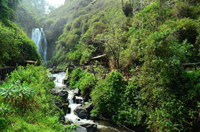 厄瓜多爾的雨林瀑布。(Roman Kuryluk/Shutterstock)