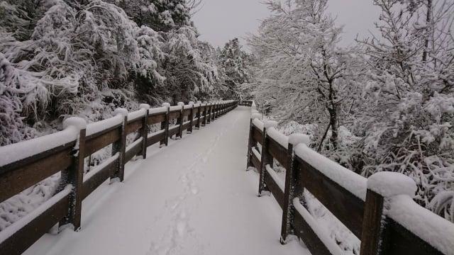 太平山積雪嚴重,遊樂區自宜專一線14.5公里以上,4日下午2點禁止車輛進入,太平山莊及翠峰山屋4、5日也不提供住宿。(黃清漢提供)