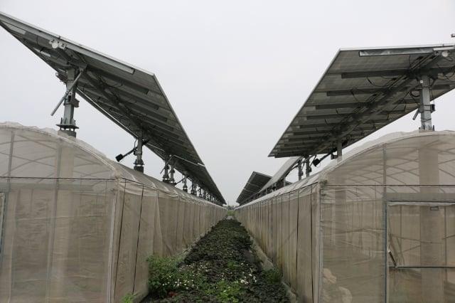 追日型太陽能發電效率比固定型高15-20% 。