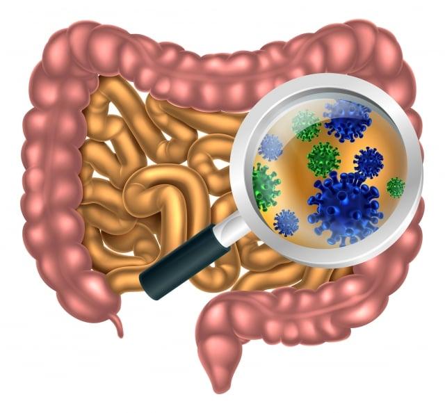 工時越長,越有可能同時出現腸胃與疲勞問題。(123RF)