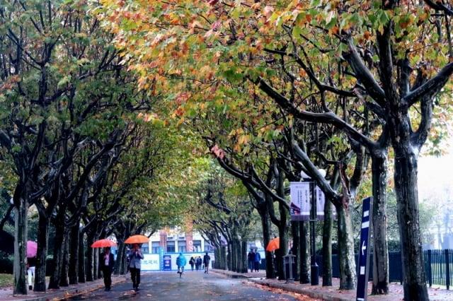 近日美媒披露,中共在大學硬推毛澤東思想,學生私下表示反感。圖為上海交大校園一景。(大紀元資料室)