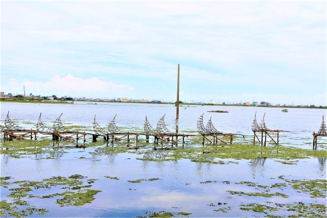 成龍溼地上的舟群,想像著海洋。(吳雁門/攝影)
