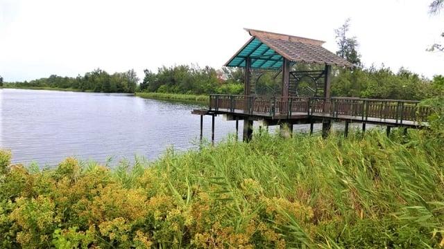 口湖海岸線滄桑地貌——宜梧滯洪池,海水來了,就住下了。(吳雁門/攝影)