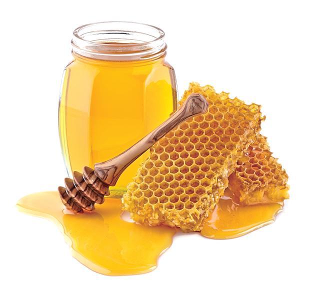 沒有蜜蜂,自然也就沒有了蜂蜜。(Fotolia)