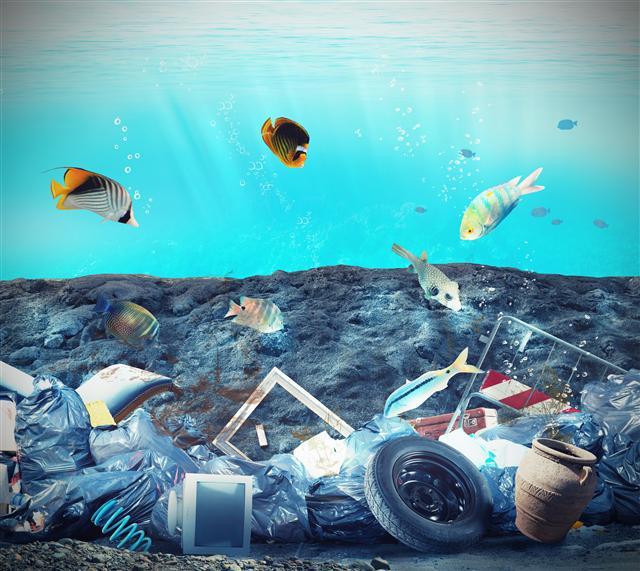 各國各地對塑膠造成環境生態的危害已深深體會到問題深刻又嚴重。(123RF)